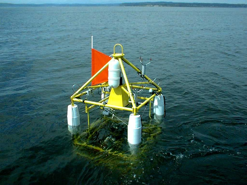 Wave mapping buoy